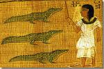 De krokodil in het oude Egypte