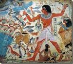De kat in het oude Egypte – dagelijks leven